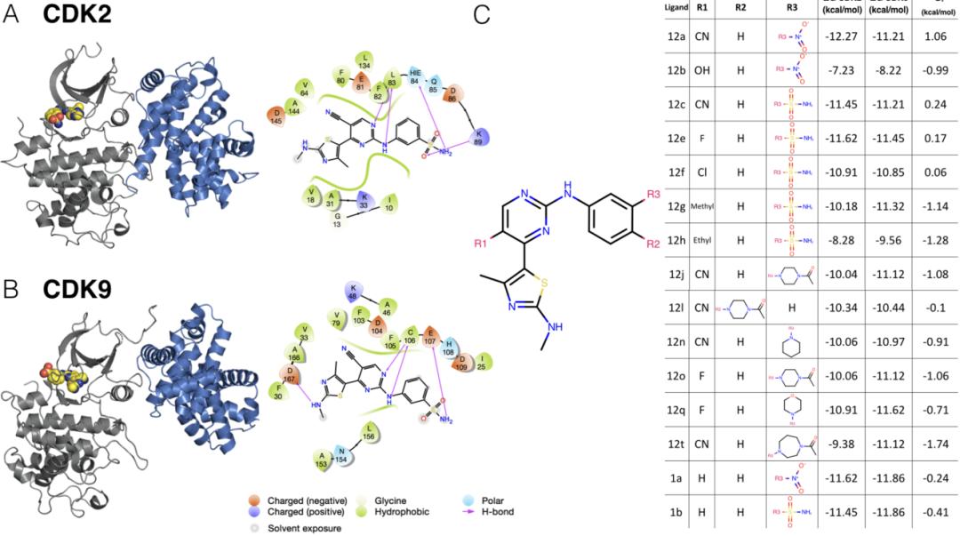 JCIM | 结合自由能计算能否预测药物选择性?