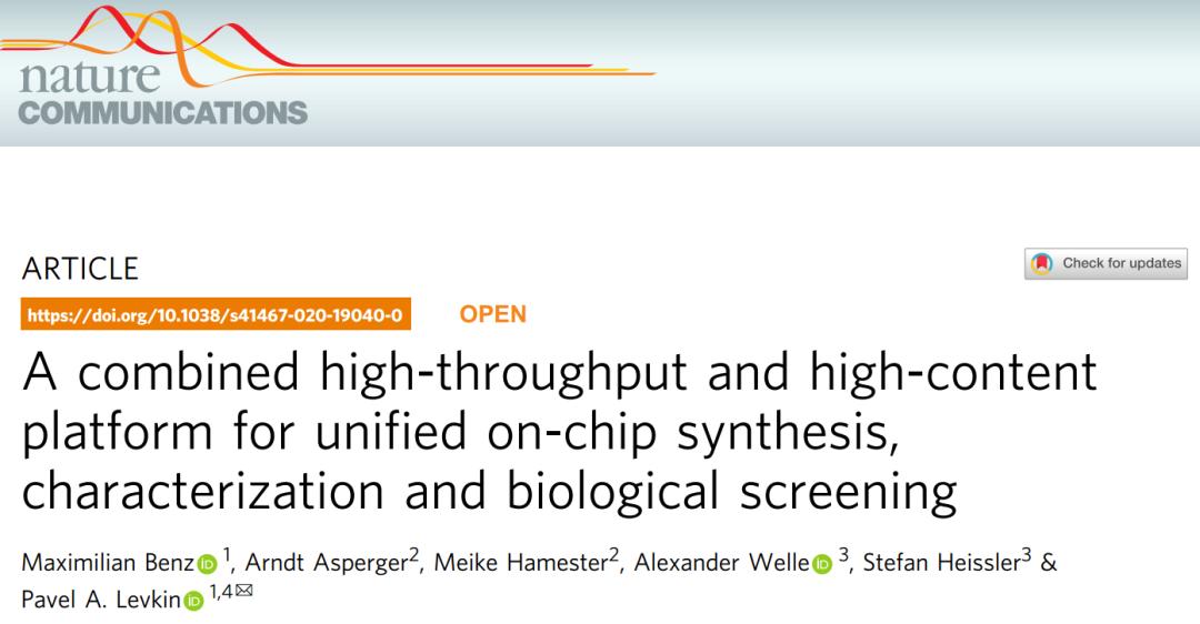 Nat Commun | 德国开发药物发现系统在一个薄片上实现化合物的高通量合成、鉴定、活性筛选