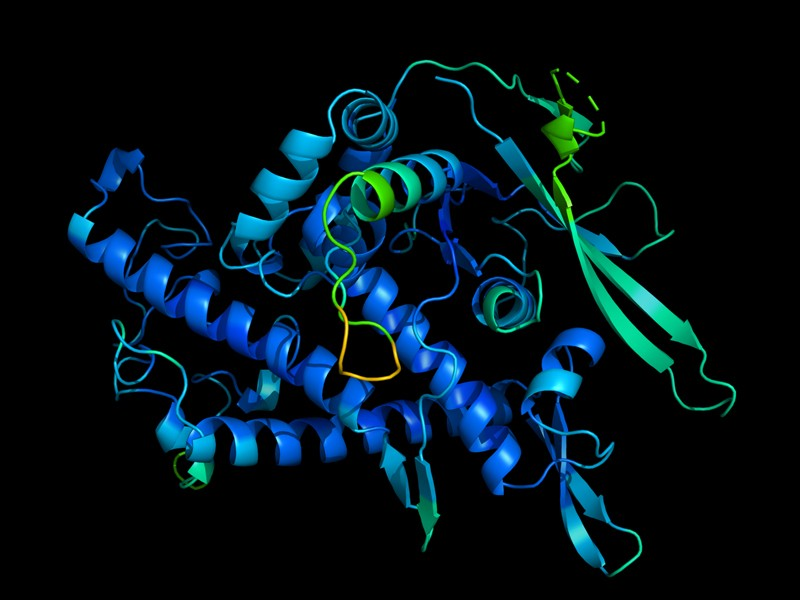 Nature News | 谷歌开发AI系统预测蛋白结构取得革命性突破