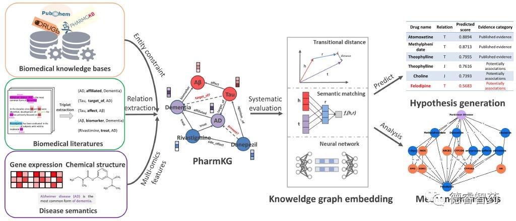PharmKG:专用于生物医药数据挖掘的知识图谱